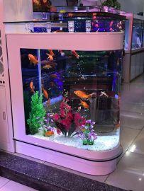Akvaario Carmita