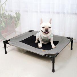 Koiranpeti Pippa