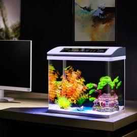 Akvaario Roysten, LED